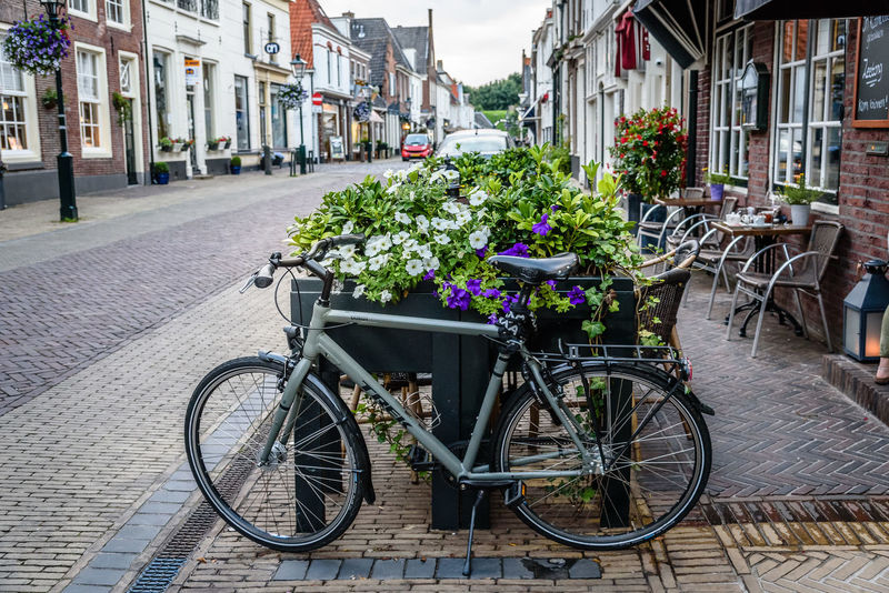 Cityscape of Naarden Architecture Bicycle Bicycle Rack Building Exterior Built Structure City City Cityscape Cityscapes Day Flower Fortress Garrison Land Vehicle Mode Of Transport No People Outdoors Sidewalk Stationary Street Tourism Town Transportation Travel Destinations Tree