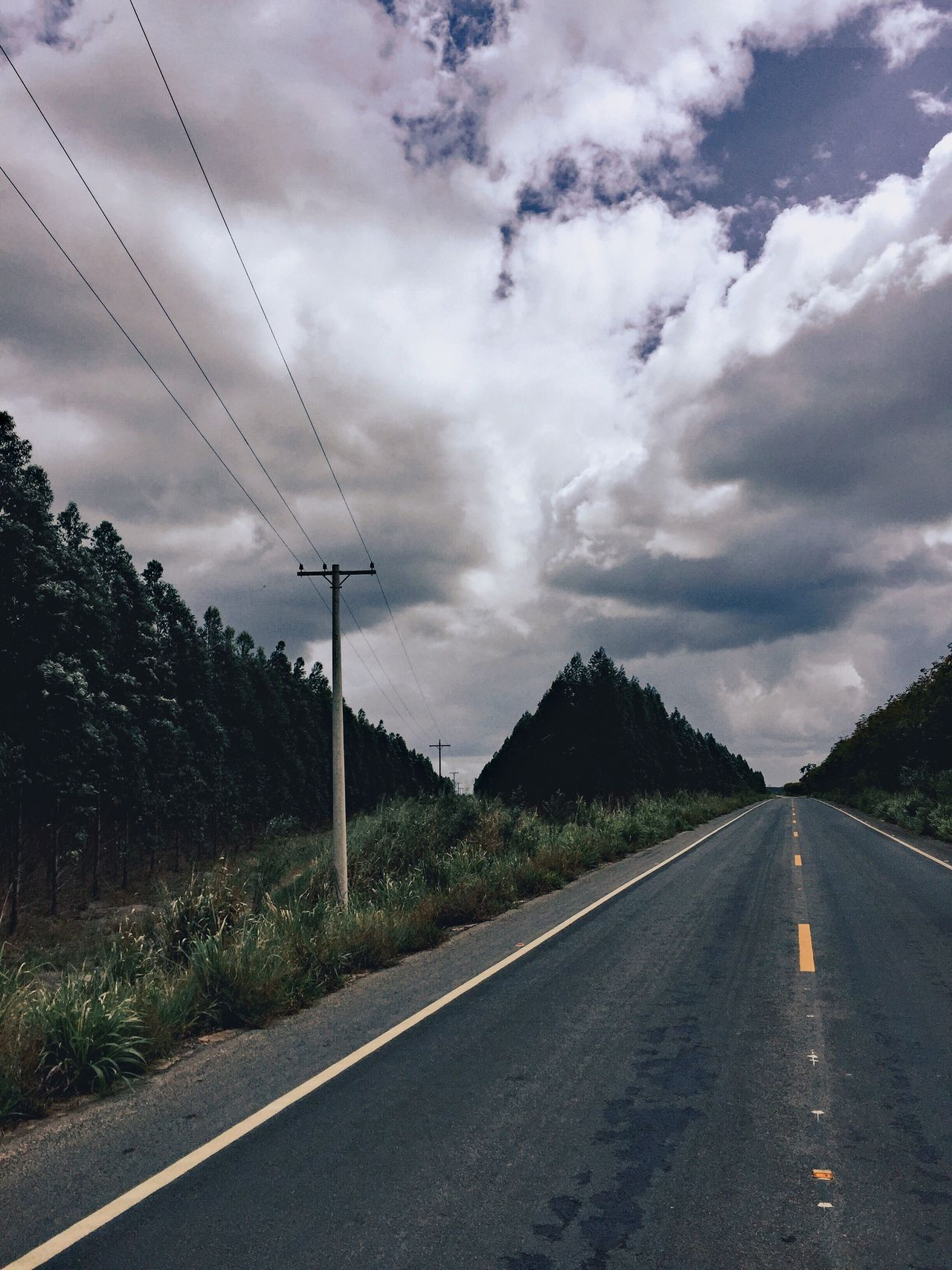 The Road Ahead Road Distant Perspective Sky Vanishing Point Signs On The Asphalt Road Cloud Cloudy Cloudy Day Tree Empty Road Long Eletricity Empty Quiet Tranquility Landscape Nature Climate Natural Beauty Outdoors Outdoor Air Free