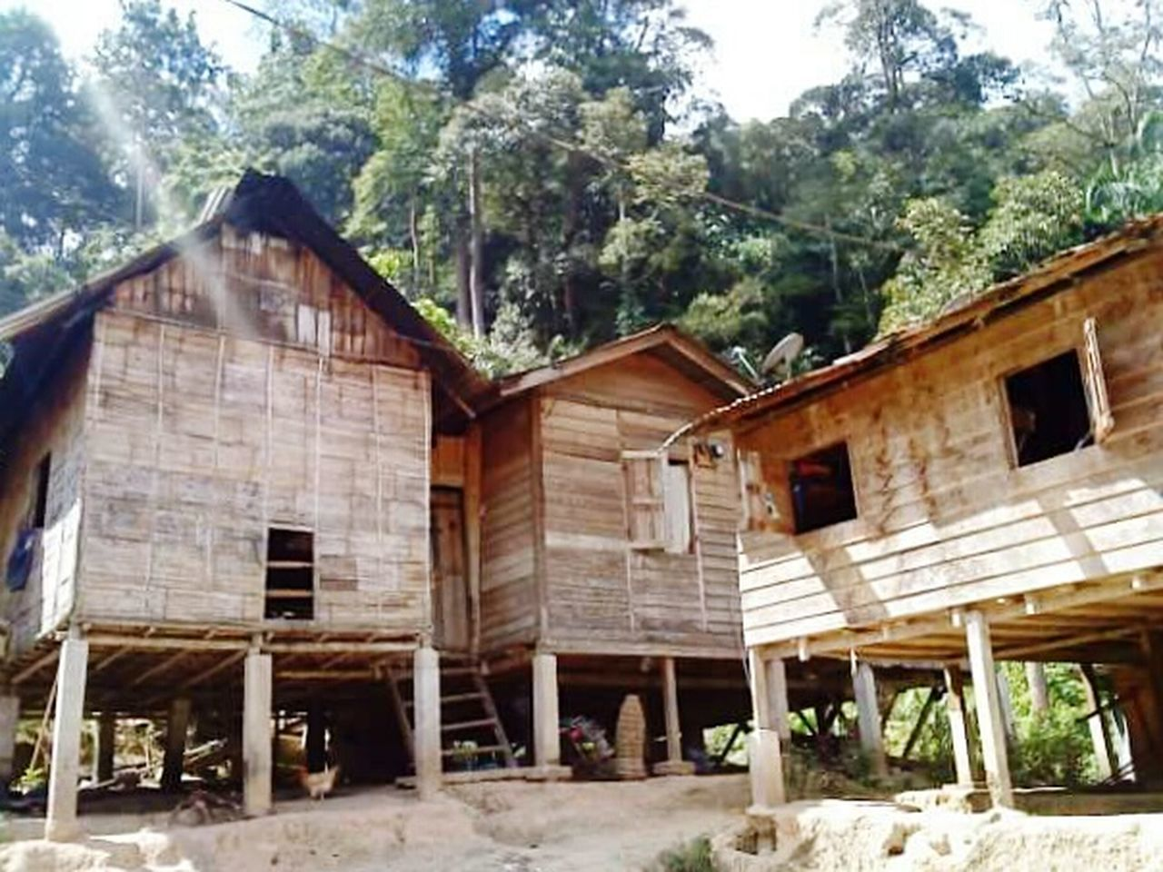 Wooden aborigines houses in Cameron Highlands, Pahang. Wooden House Aborigine Village Peaceful Place Foresthills Jungle Life Wood House Wooden Building Wooden Structure Forest Cameron Highlands Pahang Pahang, Malaysia Malaysia