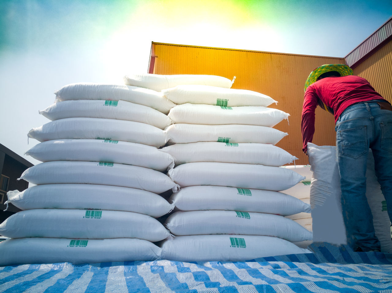 Stacking of sugar bags on truck Distribution Agronomy Bag Export Import Seed Row Tapioca Rice Grain Bulk Trade Warehouse Transportation Truck Wheat White Wholesale Wrapping Automotive Industry Tapioca Outdoors Shipping Cargo Container Loading And Unloading Handling