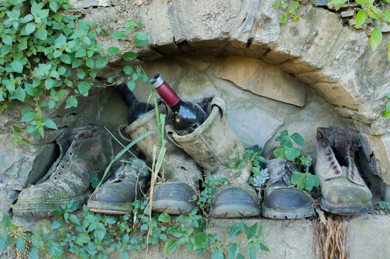 Boots Bottle Of Wine Creativity Green Color Modern Architecture Old Old Shoes Plant The Mix Up Home Is Where The Art Is Beautifully Organized
