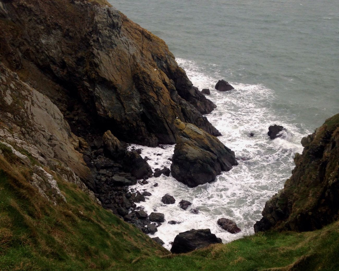 Ireland Howth Cliff Ocean Beauty In Nature Common Outdoors