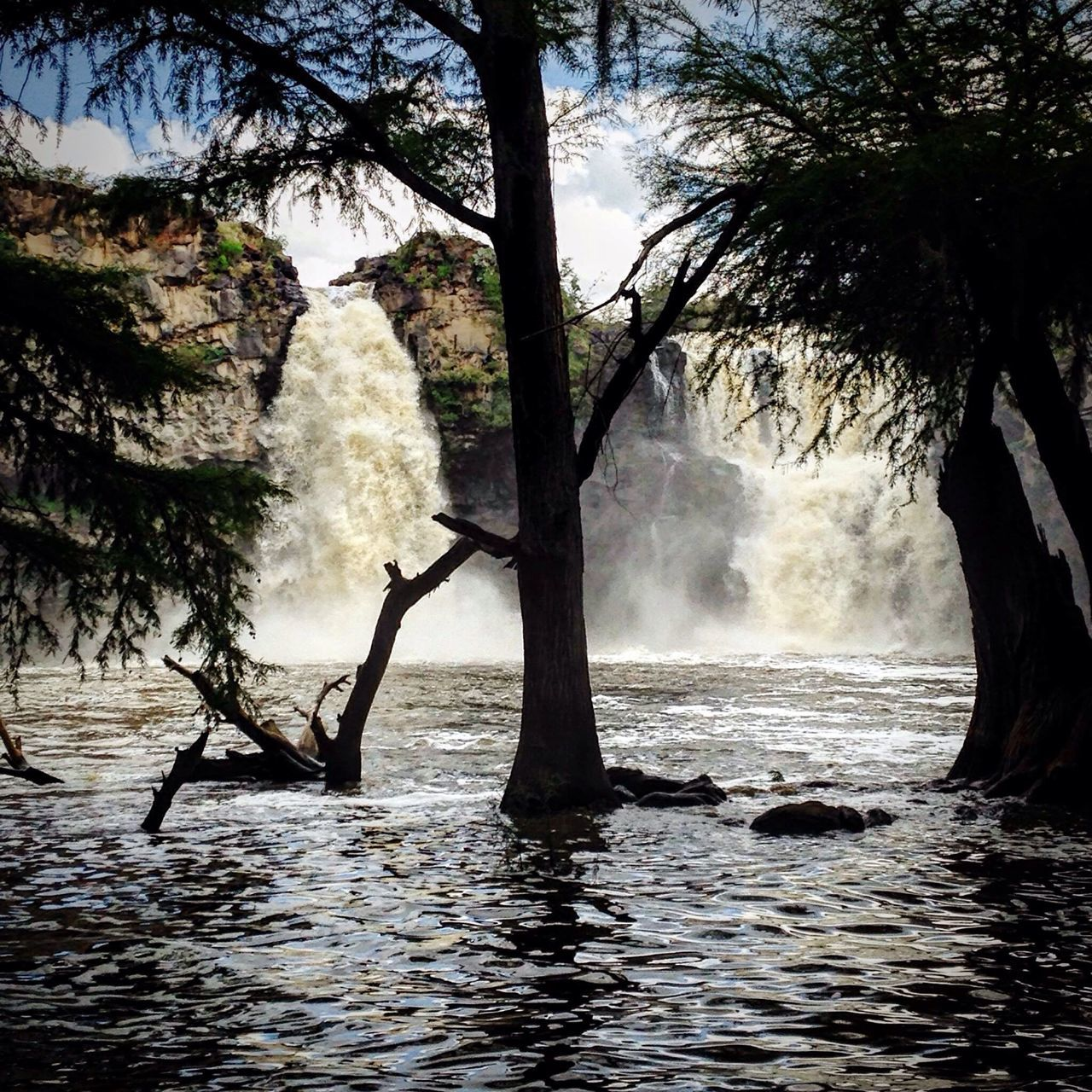 Cascadas de El Saltito en el municipio de Nombre De Dios DurangoMX Nature Water Beauty In Nature Landscape Beatiful Nature Paisaje Relaxing Cascada Fall Naturaleza🌾🌿 Naturaleza