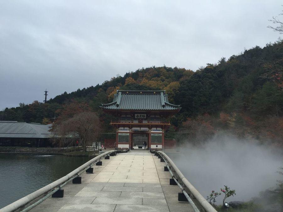 #勝尾寺#大阪#紅葉#仏閣#寺院#autumn#autumnleaves#お寺#temple#散歩#秋#箕面