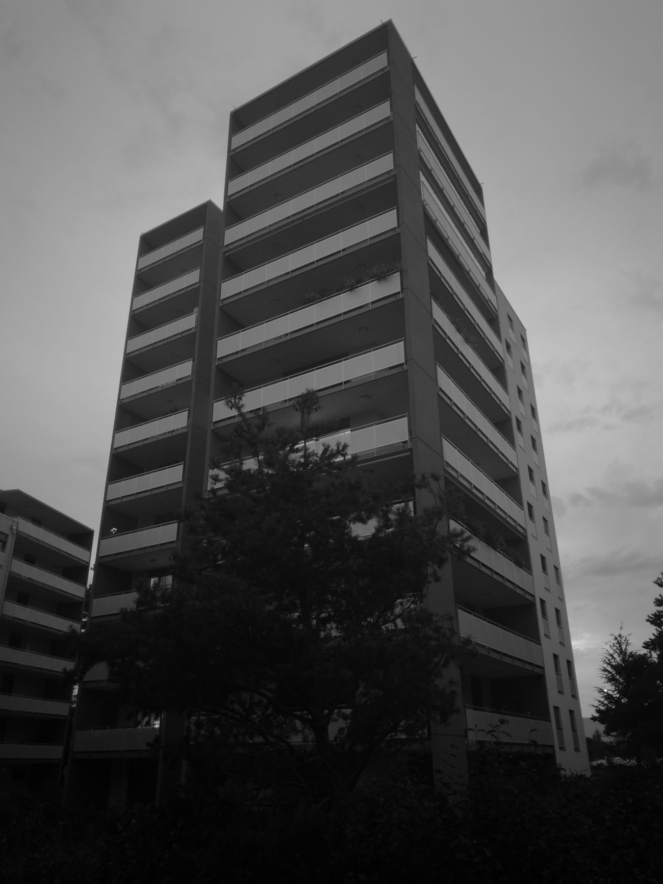 Cologny Geneva Les Cedres De Cologny Architecture