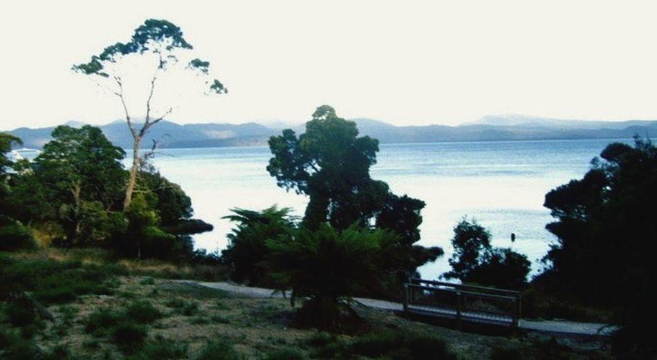 Tasmania Old Prison Tasmanian Prison Island Prison