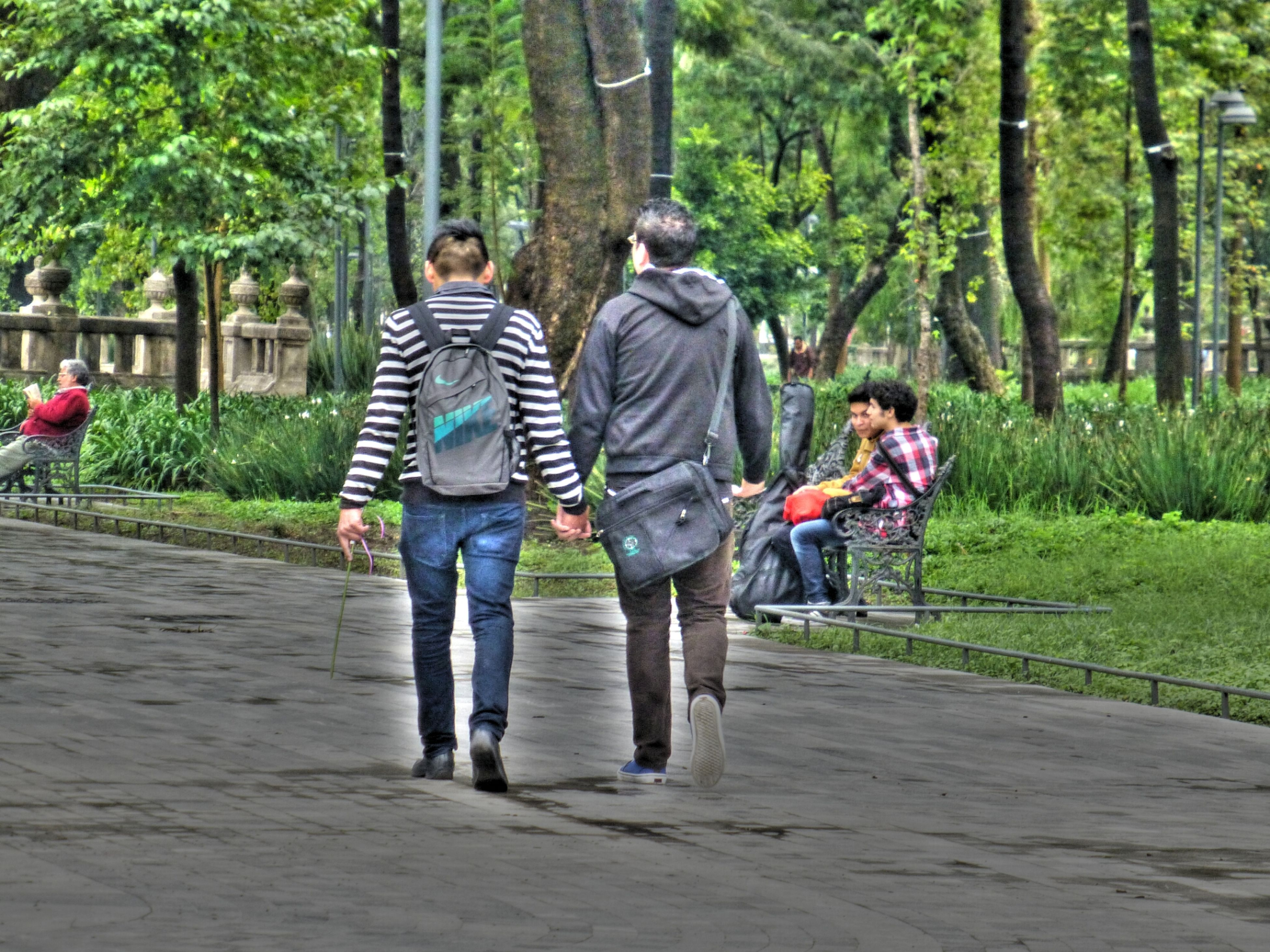 full length, tree, rear view, lifestyles, leisure activity, togetherness, casual clothing, walking, bonding, the way forward, person, men, love, footpath, park - man made space, holding hands, tree trunk, growth