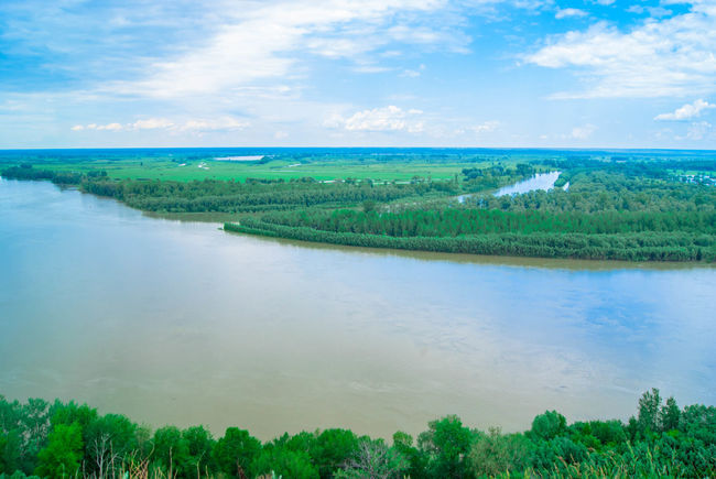 Forest Horizon Over Water Nature No People River Sky The Floodplain Of The River Water