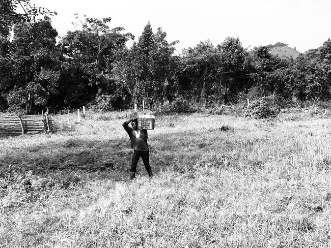 Real People One Person Field Tree Grass Nature Lifestyles Outdoors Day Holding Growth Human Hand Beauty In Nature Harvest Harvesting Black And White Friday