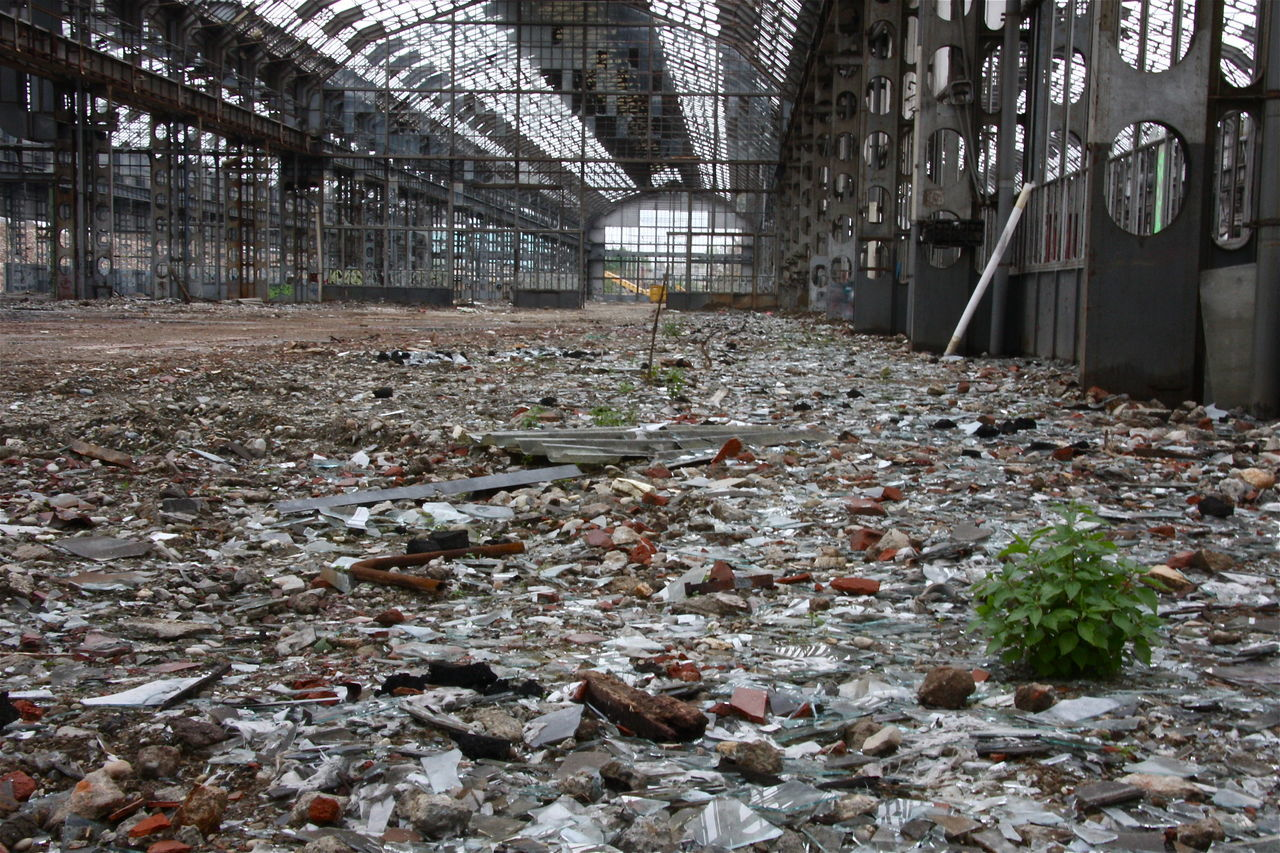 Big Space Broken Dust Factory Life Plant Ruins Urban Archeology