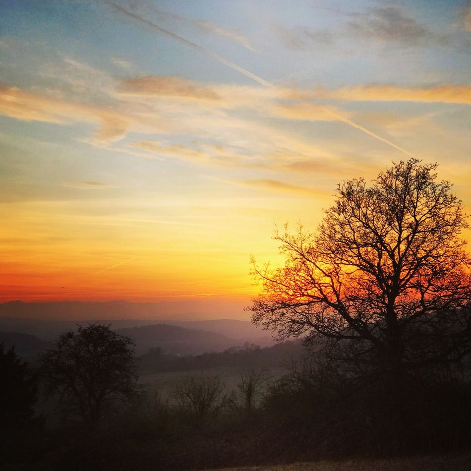 UK Weather: Sunset over Guildford. Newlands Corner, Guildford. UK Weather 11th December 2016: clear and calm conditions followed the wet and windy weather overnight. Sunset over the Surrey Hills. Sunset #sun #clouds #skylovers #sky #nature #beautifulinnature #naturalbeauty #photography #landscape Sunset And Clouds  Sunset Silhouettes Sunset_collection Landscape Photography Sunset IPhone 7 Plus Dusk Europe Uk England Surrey Countryside Surrey Guildford Merrow Newlands Corner Outdoors Weather