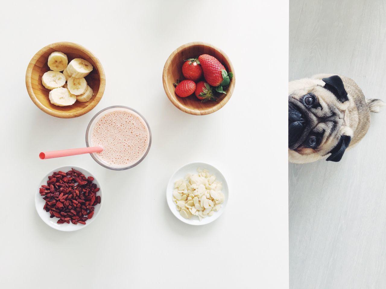 Beautiful stock photos of banana, Animal Themes, Banana, Bowl, Canine