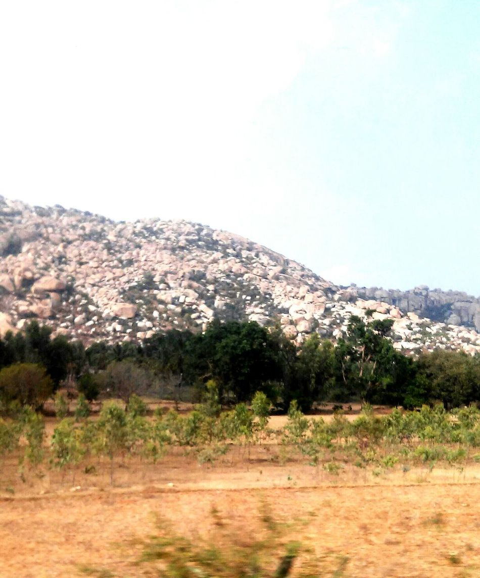 Rocky mountains, trees, dry fields, clear skies All about travelling in India India Travel Mountains Mountain Trees Tree Rocks Dry Fields Field Bluesky Sky Clearsky Yellowfield Train