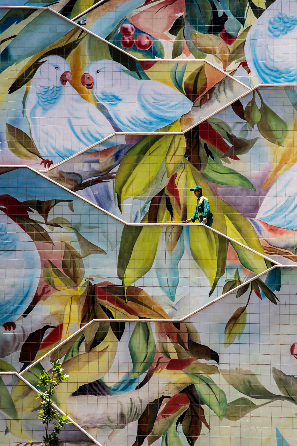 Birds Design Graffiti Iran Leaf Middle East Multi Colored Persia Stairs Street Photography Street Scene Tehran Travel