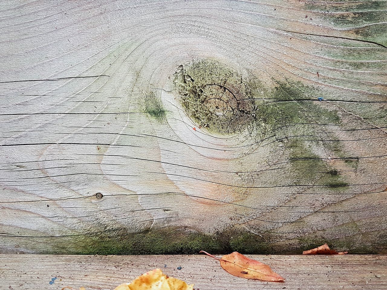 Showing its age... I See Faces (The Original) Shapes In Nature  Wood Material Wood Rings Wood Surface Textured  Texture In Nature Nature Is Art Shapes And Patterns  Pattern Patterns In Nature Textures And Surfaces Looking At Things Differently Maximum Closeness After The Rain | Full Frame Backgrounds No People Close-up Outdoors Day