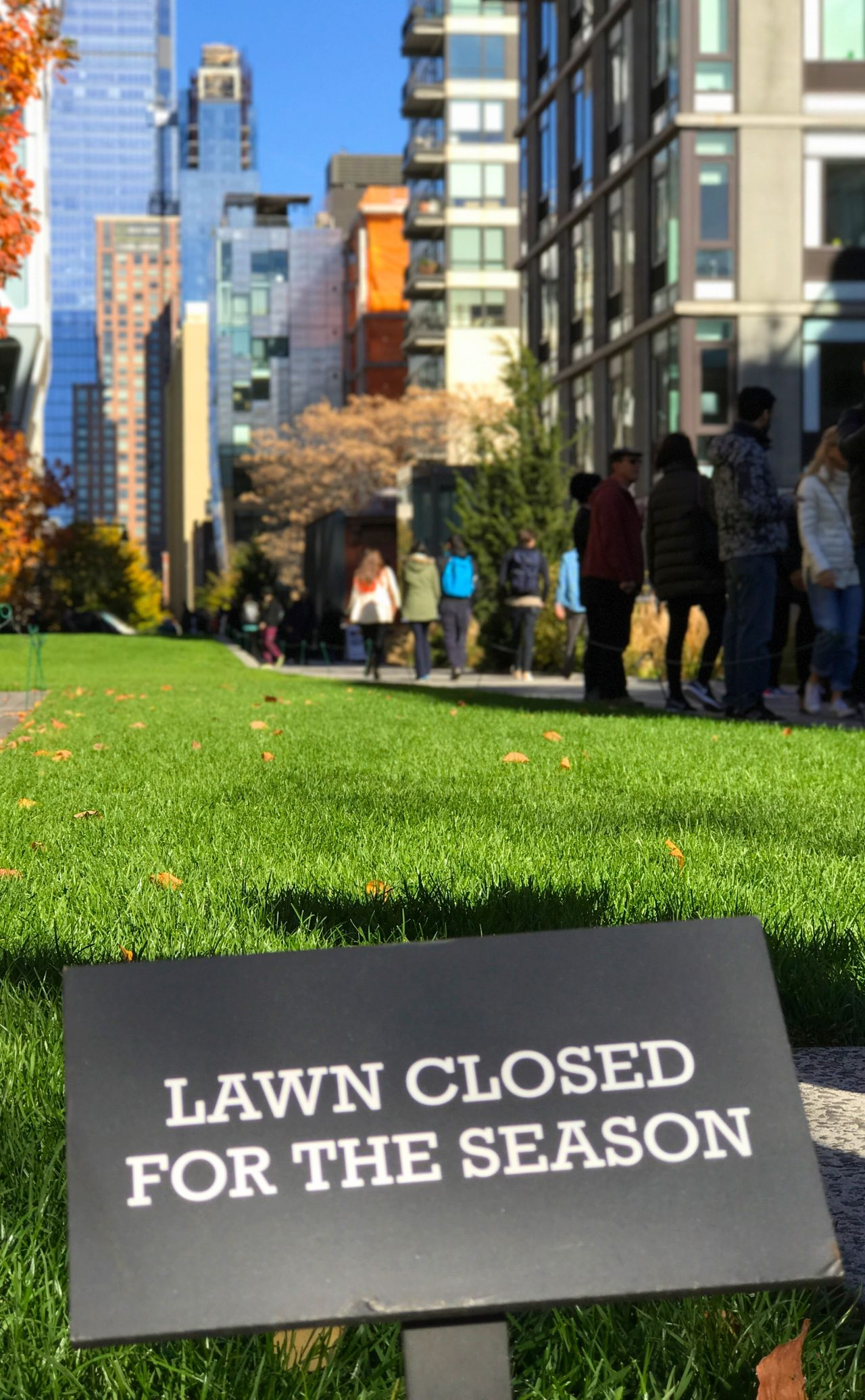 City Grass Building Exterior Architecture Green Color Built Structure Growth Playing Field Skyscraper Outdoors Day People Sky Colour Of Life Colorful Colors Manhattan High Line High Line Park New York ❤ New York City New York Close-up City Grass