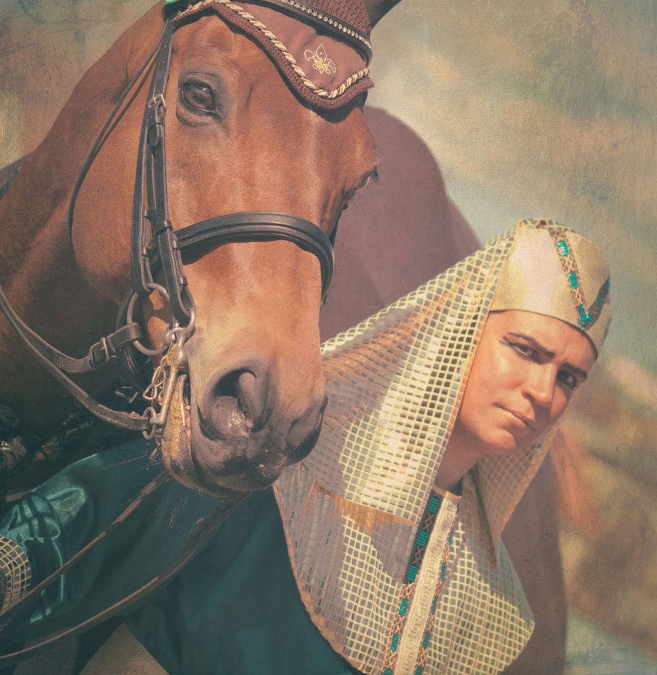 Art Egyption Horse Man Tone