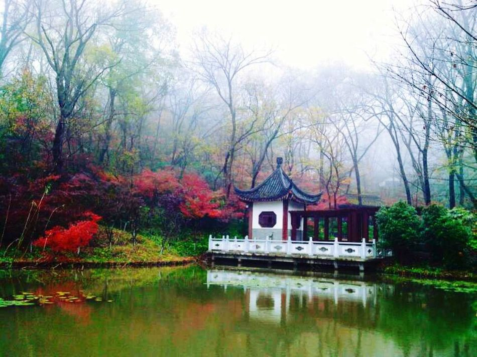 Autumn🍁🍁🍁 Qixia Temple