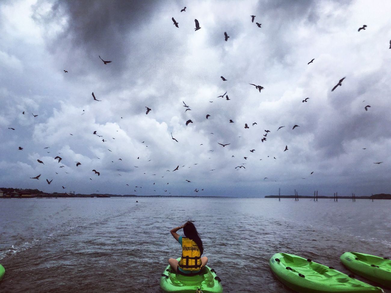 Check This Out Hawks Traveling Travel Taking Photos Life Chillaxing Nature_collection Animals Enjoying Life Thailand EyeEm Best Shots EyeEm Nature Lover