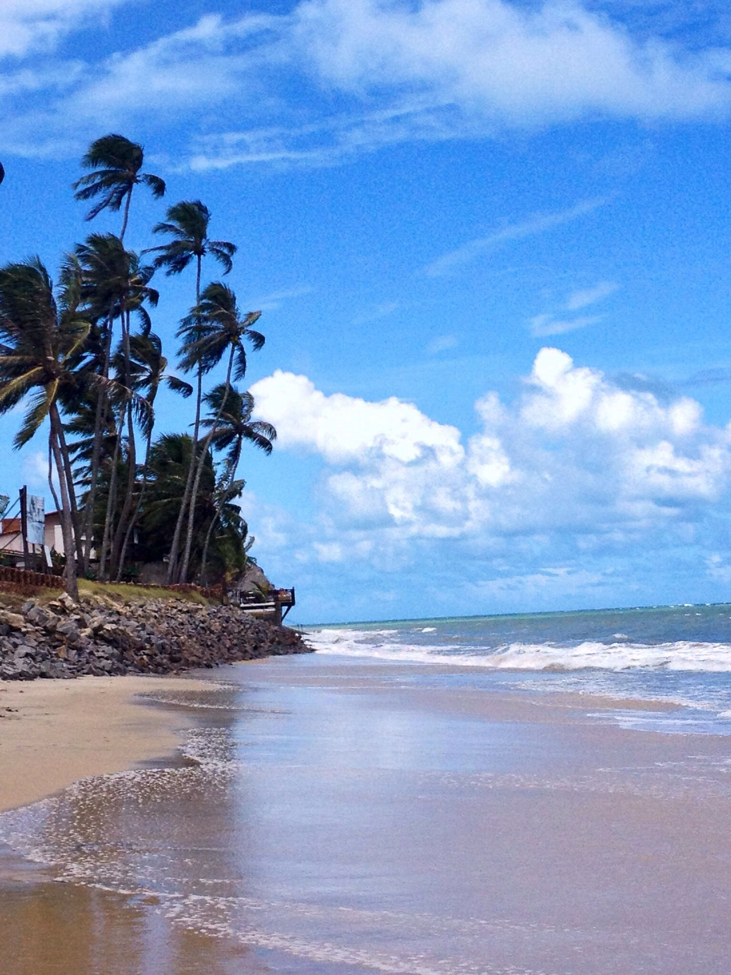 sea, beach, horizon over water, water, sky, shore, sand, tranquil scene, tranquility, scenics, cloud - sky, beauty in nature, nature, palm tree, cloud, wave, coastline, tree, cloudy, idyllic