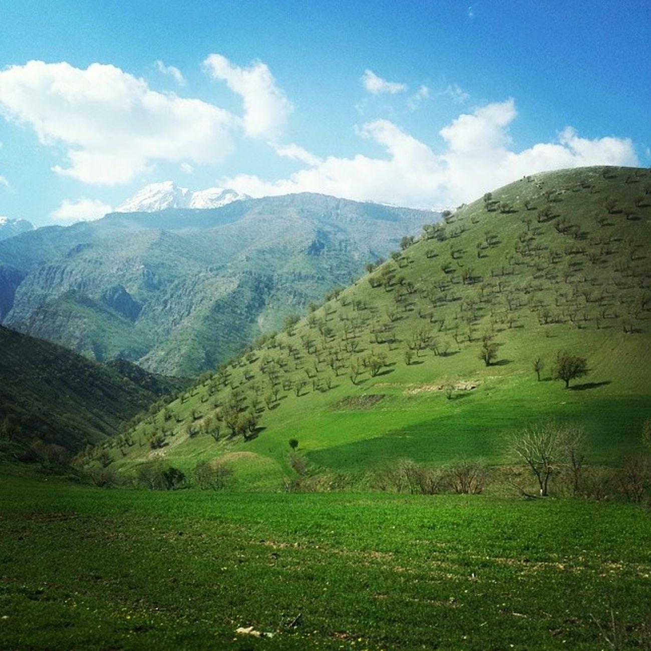Firstdayofspring Kurdistanregion Kurdistan Mountain Spring Happynewroz Kurdishinsta Instaspring Newroz Hawler Erbil