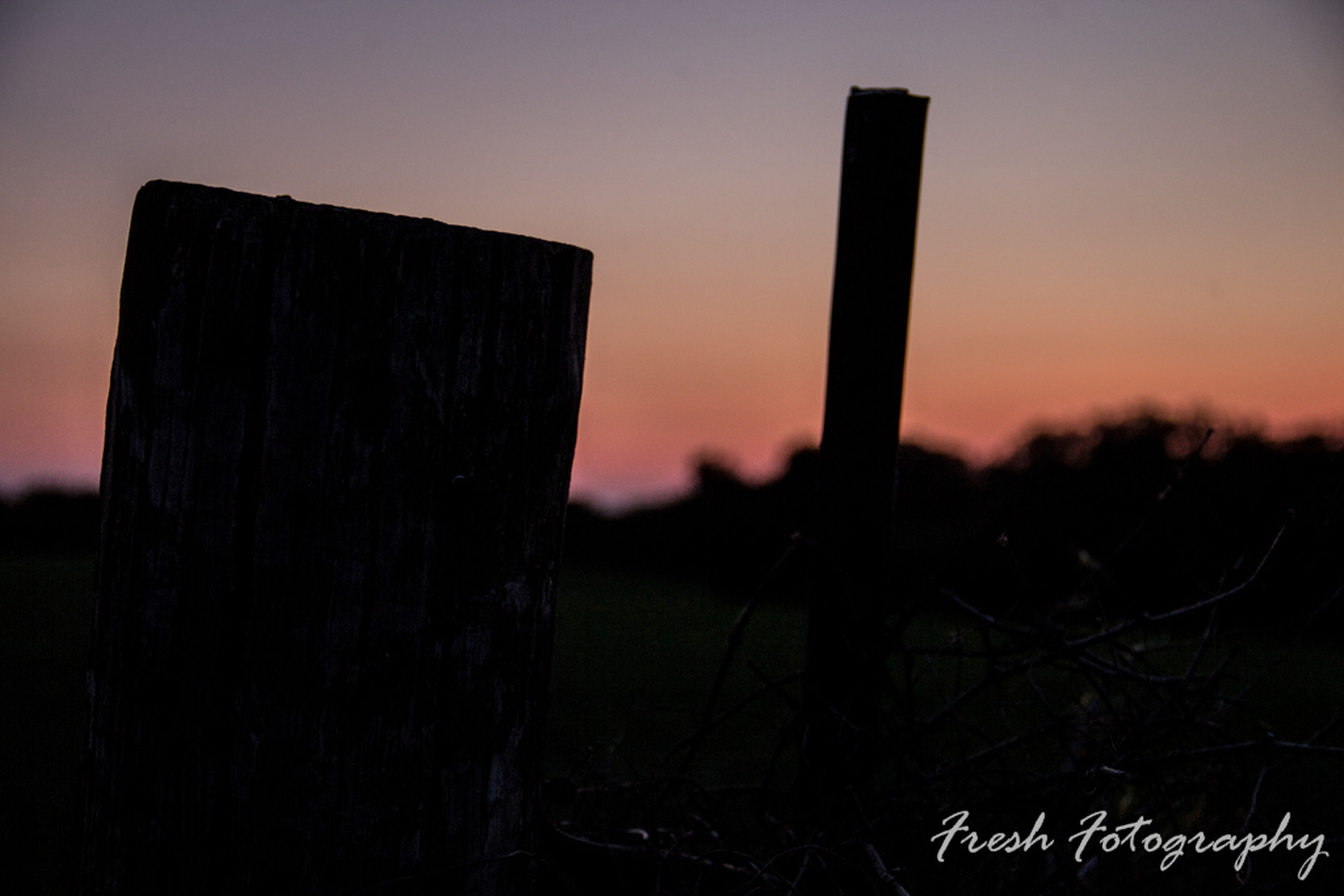 sunset, focus on foreground, sky, protection, safety, field, close-up, tranquility, security, nature, barbed wire, landscape, wooden post, tranquil scene, no people, outdoors, scenics, beauty in nature, orange color, selective focus, idyllic, growth, pole, non-urban scene, cloud, remote