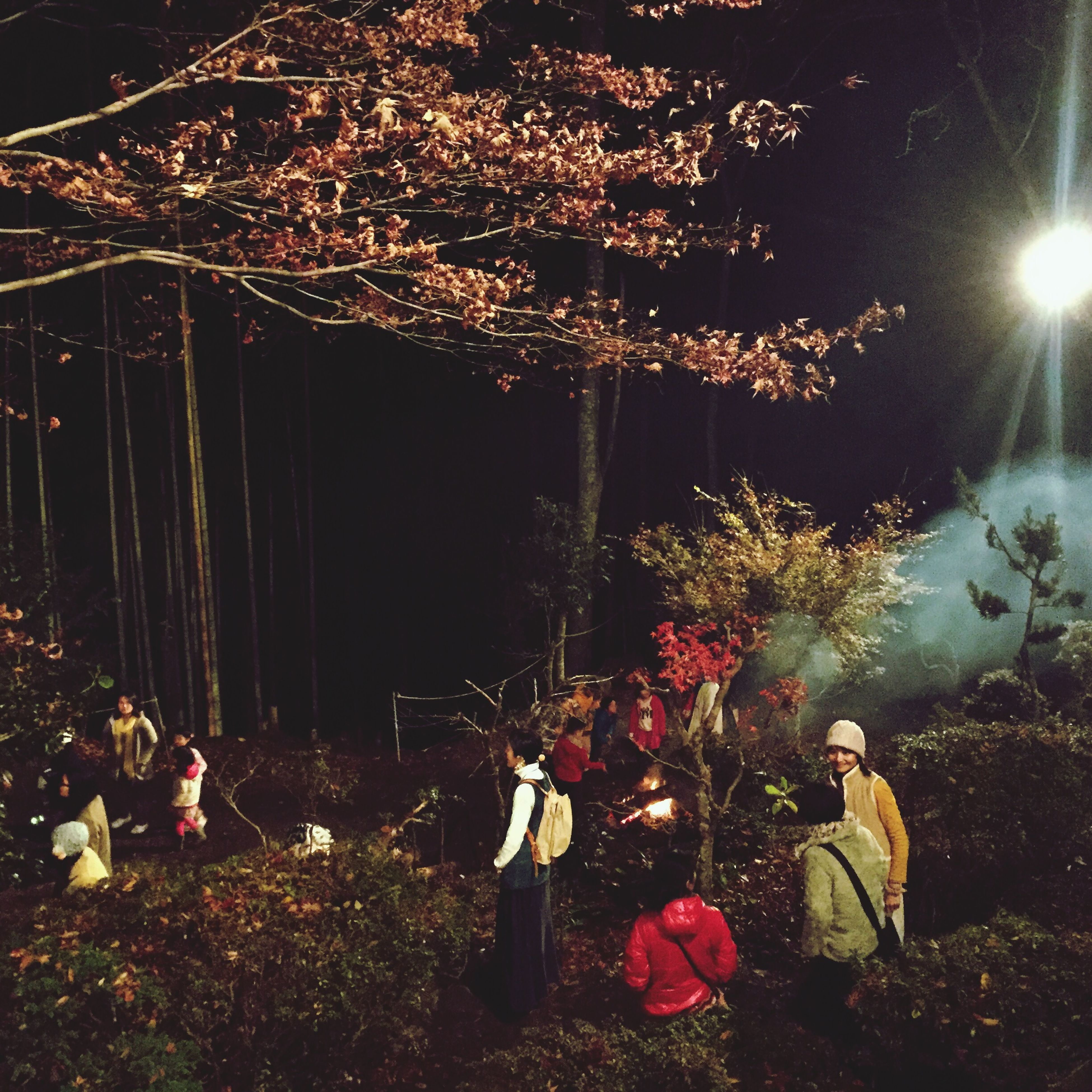 illuminated, night, lifestyles, leisure activity, men, celebration, person, lighting equipment, arts culture and entertainment, tree, event, standing, rear view, togetherness, enjoyment, large group of people, sitting, casual clothing