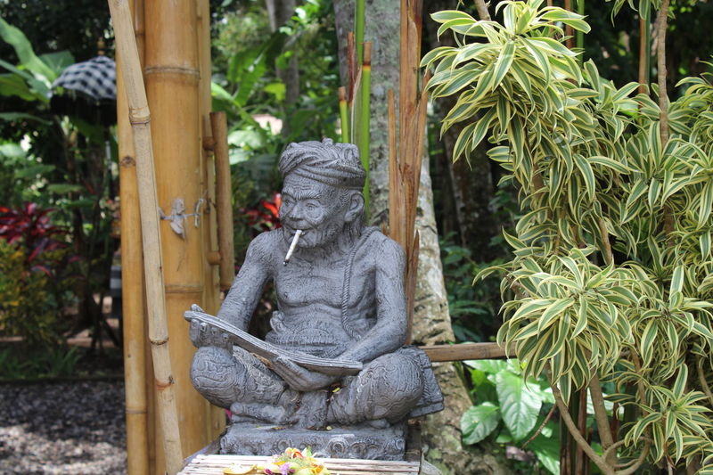 Ubud, Bali Beauty In Nature Day Human Representation Lostinthemoment Nature No People Outdoors Sculpture Statue Streetphotography Tree