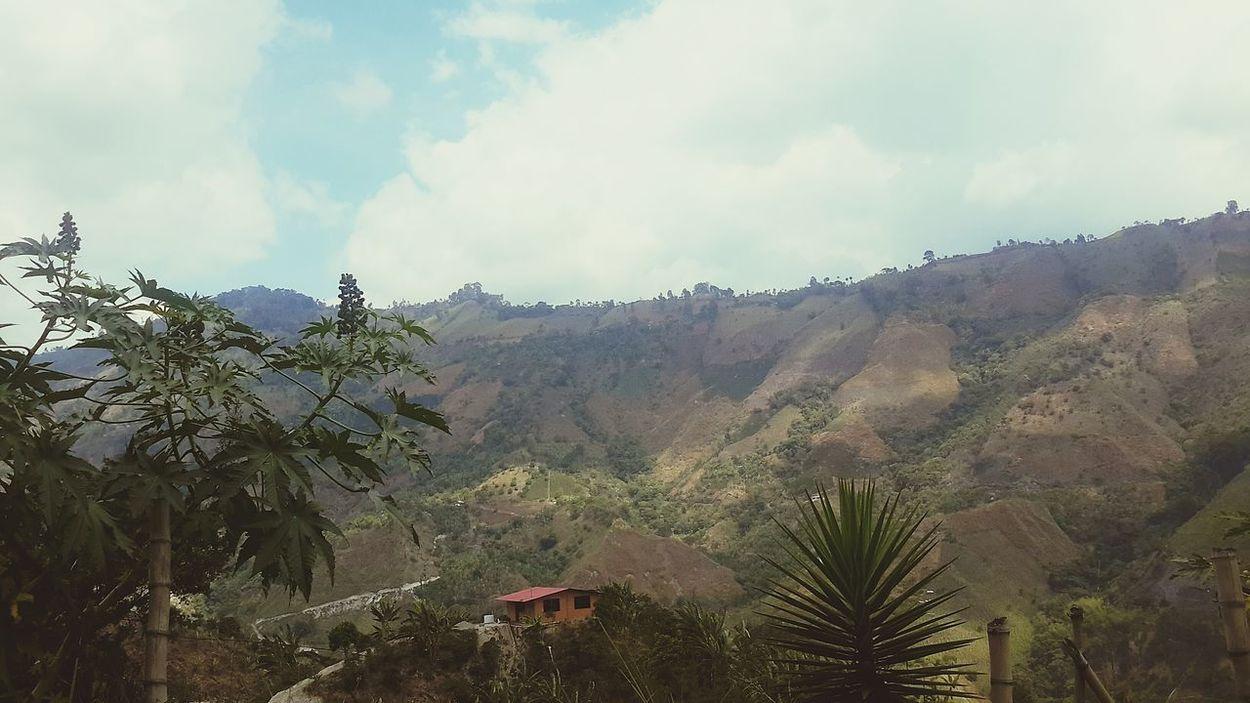 Paisaje Naturaleza Cajamarca Colombia Tolima Colombia Natural Mountain Paisajes Colombianos Photography