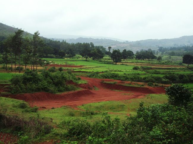 Landscape Field Agriculture Nature Mountain Sky EyeEm Nature EyeEm Nature Lover Travel Photography From My Point Of View EyeEm Travel Photography High Angle View On The Way Eastern Ghats Mountain Range Eyeem Travel Explore India My Photo Commute The Color Of School