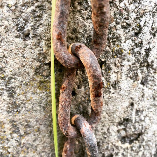 Unchainmyheart Joecocker R.I.P Chain Grass