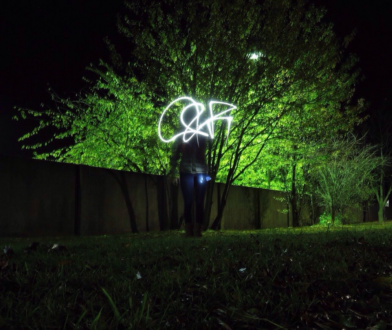 Green Long Exposure Night Green Color Tree Outdoors Nature Illuminated Growth EyeEm Best Shots EyeEm Gallery EyeEm Nature Lover EyeEm EyeEmBestPics Torch Torchlight