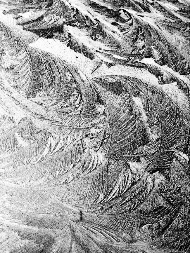 Winter Frost Black And White Blackandwhite Black & White Frost Winter Texture Abstract Monochrome It's Cold Outside