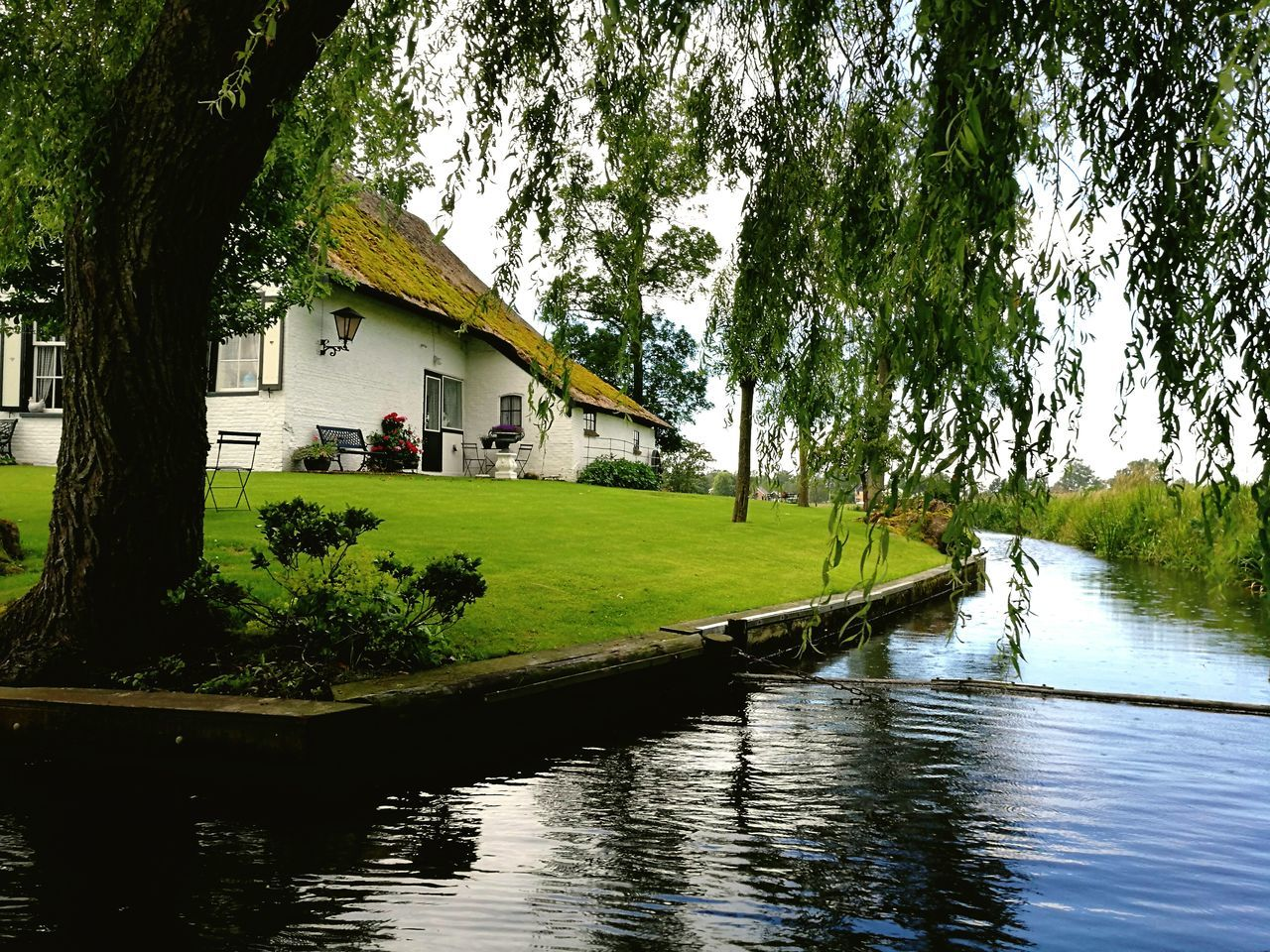tree, water, architecture, built structure, building exterior, house, day, river, tranquility, nature, outdoors, growth, scenics, beauty in nature, no people, sky