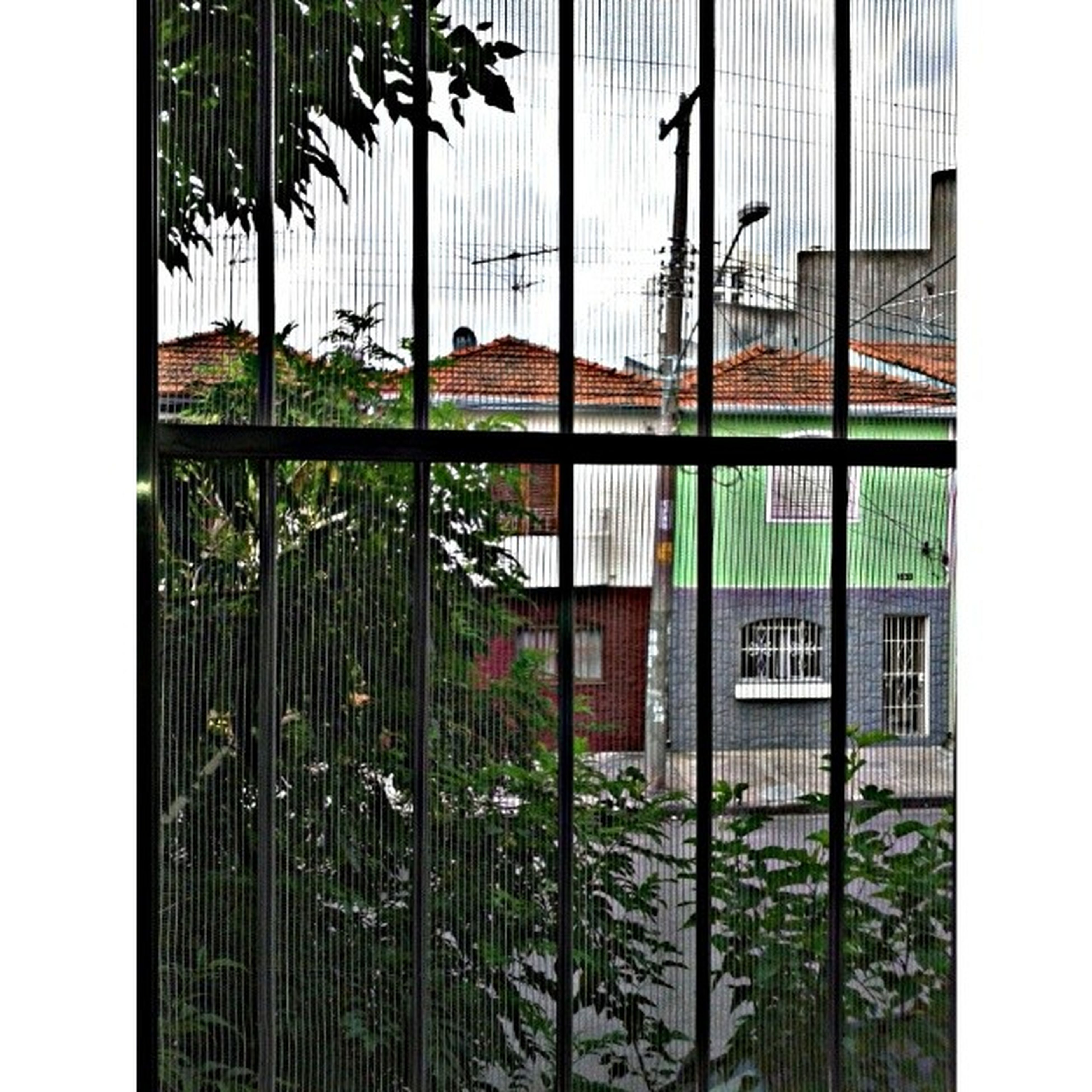 building exterior, architecture, built structure, transfer print, window, auto post production filter, house, residential structure, city, glass - material, building, residential building, fence, day, no people, plant, chainlink fence, outdoors, growth, tree
