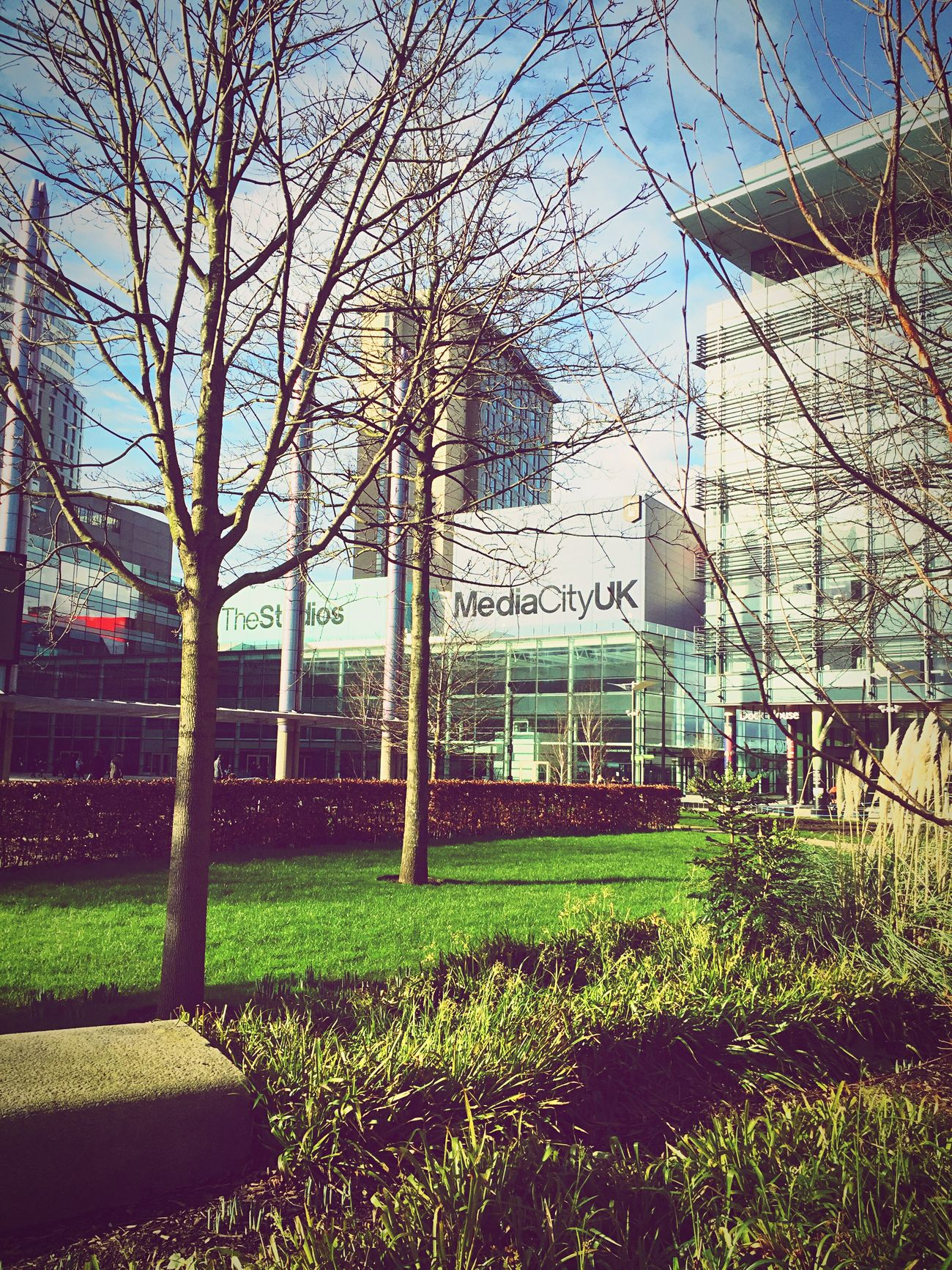 My second home. Architecture Auto Post Production Filter Bare Tree Beautiful Building Exterior Built Structure Change Day Environmental Conservation Hanging Leading Low Angle View Mediacityuk Metal Narrow No People Outdoors Park Playground Sunny The Way Forward Tree University Working