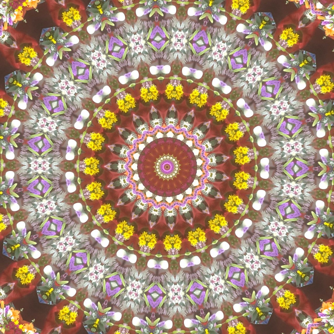 Streets of downtown annapolis next the florist's stand. Floral Pattern No People Flower Pattern Multi Colored Day Urban Circle Kaleidoscope Floral