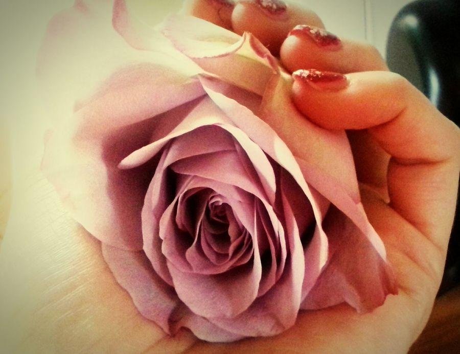 Rose🌹 Roses🌹 Roses World 🌹❤️🌹 Rosa Rosas🌹🌹 Rosas🌹 Rosa ♡ Rose♥ Rose - Flower