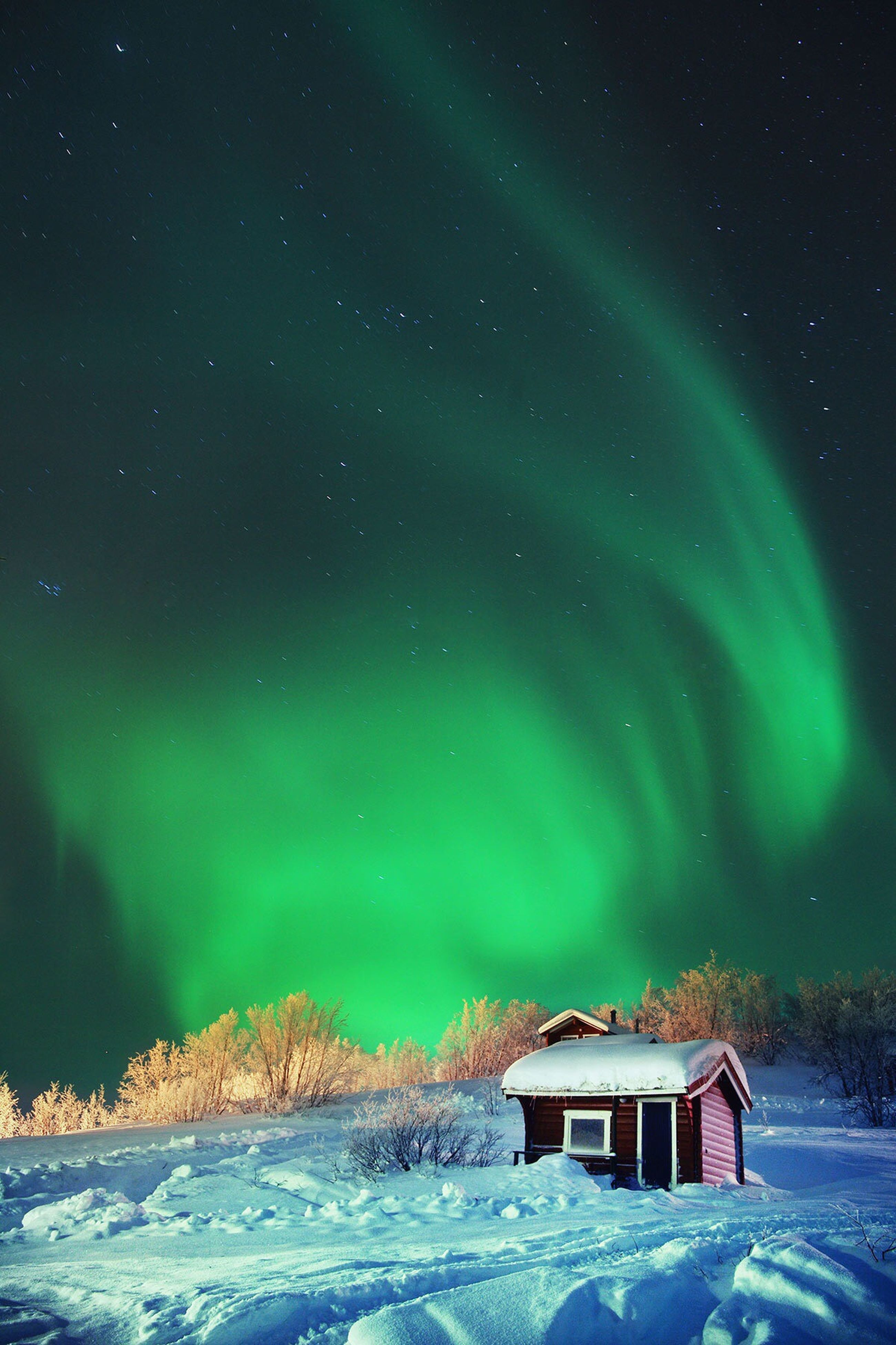 night, star - space, built structure, house, architecture, snow, sky, building exterior, scenics, tranquility, winter, tranquil scene, beauty in nature, nature, astronomy, star field, landscape, blue, low angle view, tree