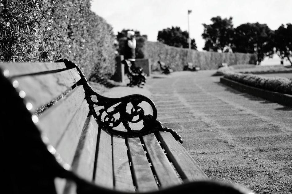 Chair Hedges Quiet Memories Park 650d