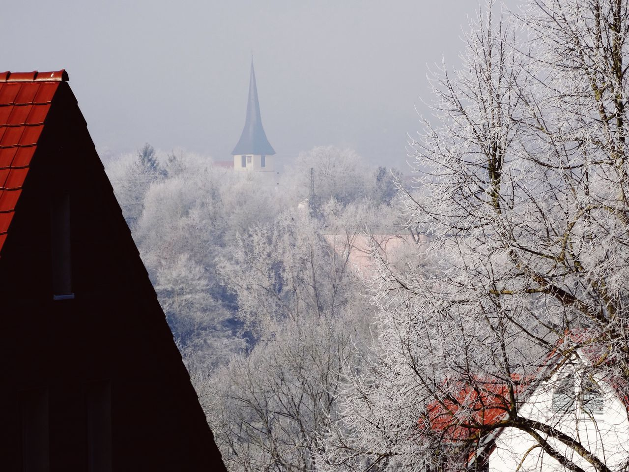 Built Structure Architecture Tree Building Exterior Winter Snow Cold Temperature No People Germany Outdoors Day Sky Nature Cold Days Cold White Frost Frost New Year Winter House Roof Church City