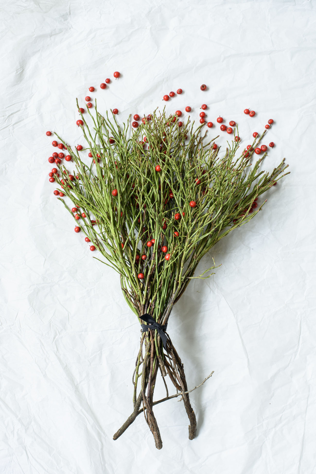 Flat Lay Fruit Huckleberryplant Nature Plant Red Twig Winter Xmas Xmas Decorations