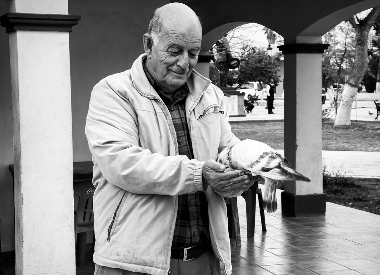 Only Men Birds Of EyeEm  People Adult Men Day Lifestyles One Person One Man Only Naturephotography Birds_collection Mr Bird Taking Photos Mexico Black And White Portrait Bird Photography Happiness Naturephotography Blackandwhite Photography Coahuila, México Coahuila