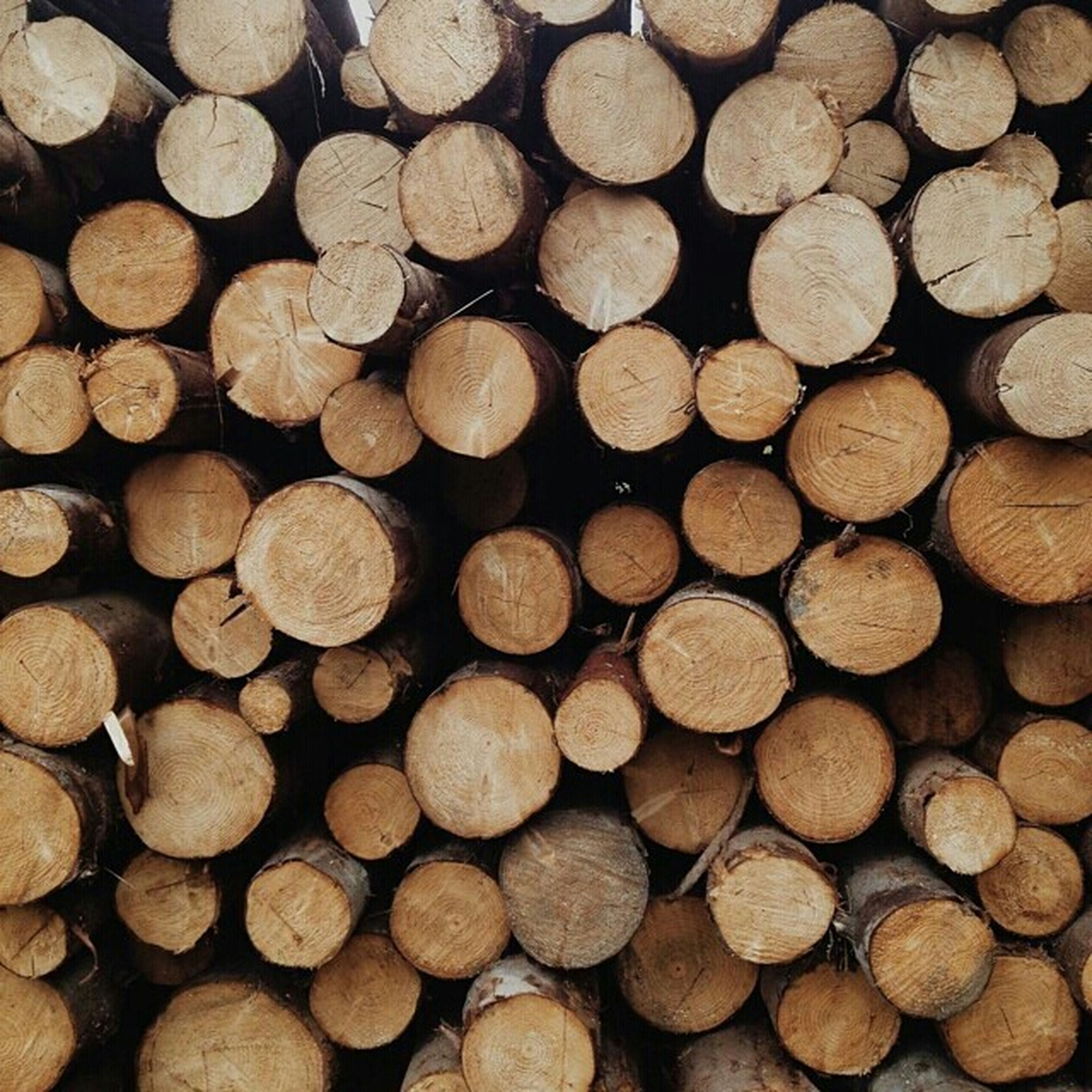 firewood, large group of objects, abundance, lumber industry, deforestation, stack, log, timber, full frame, backgrounds, wood - material, environmental issues, heap, fossil fuel, woodpile, fuel and power generation, pile, textured, wood, arrangement