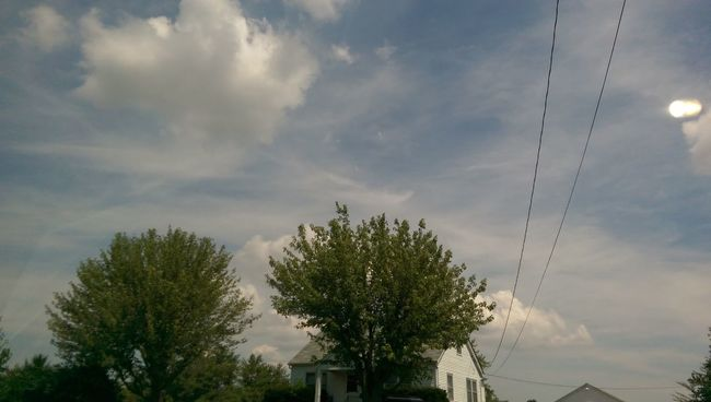 The Purist Home Tree Home Brush The Sky Cloudlovers Electrick Eye Am Nature