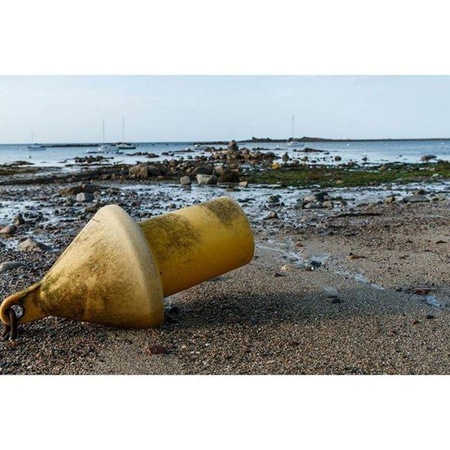 Boje Buoy Beach Beachlife Rocks Strand Felsen Ebbe Gezeiten Tides Brittany Bretagne Pleubian France