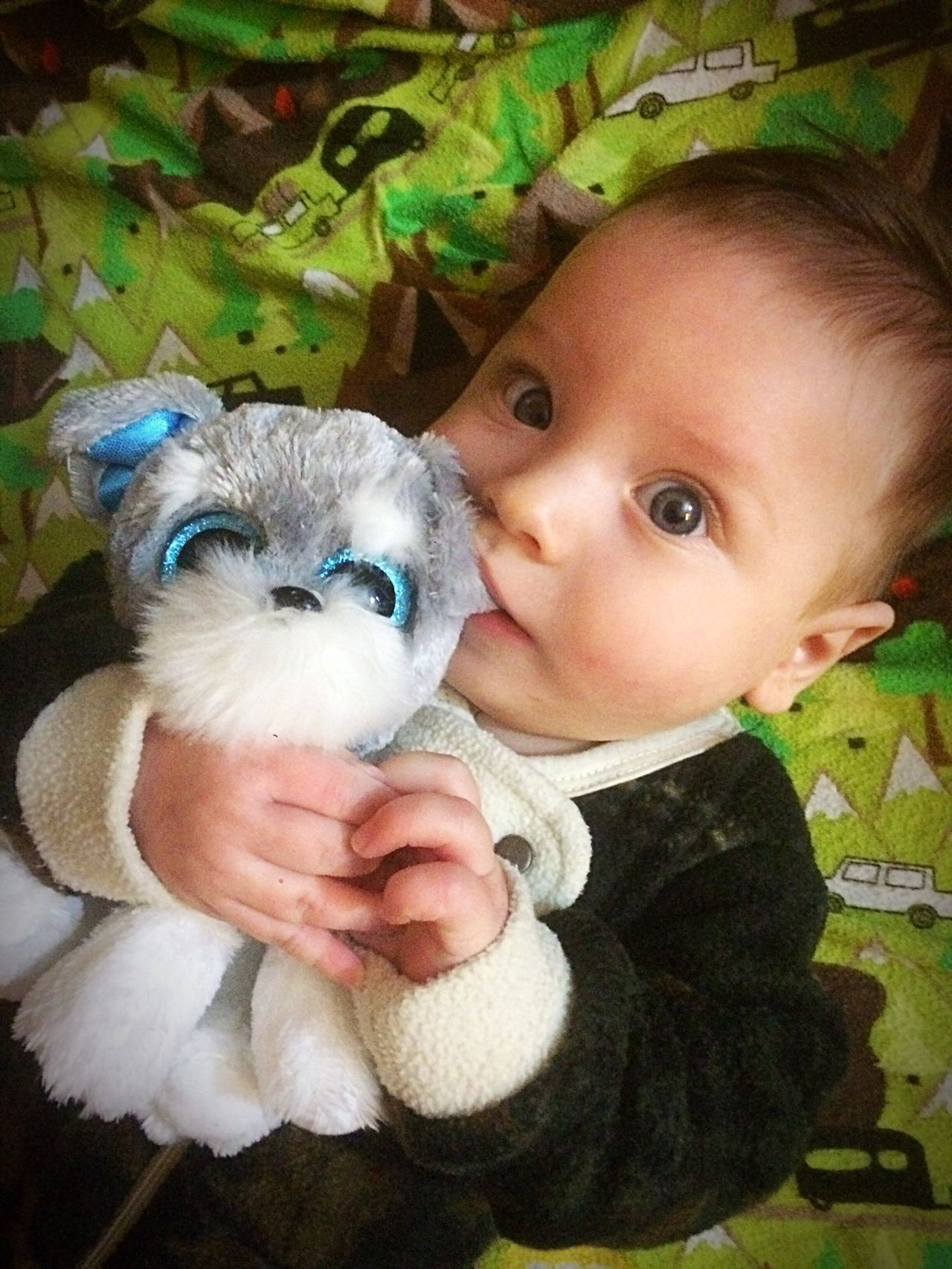 Innocent eyes Cute Innocence Portrait Childhood One Person Stuffed Toy Teddy Bear Indoors  Real People Front View Babyhood Animal Themes Home Interior Pacifier Domestic Animals Softness Close-up Baby Mammal