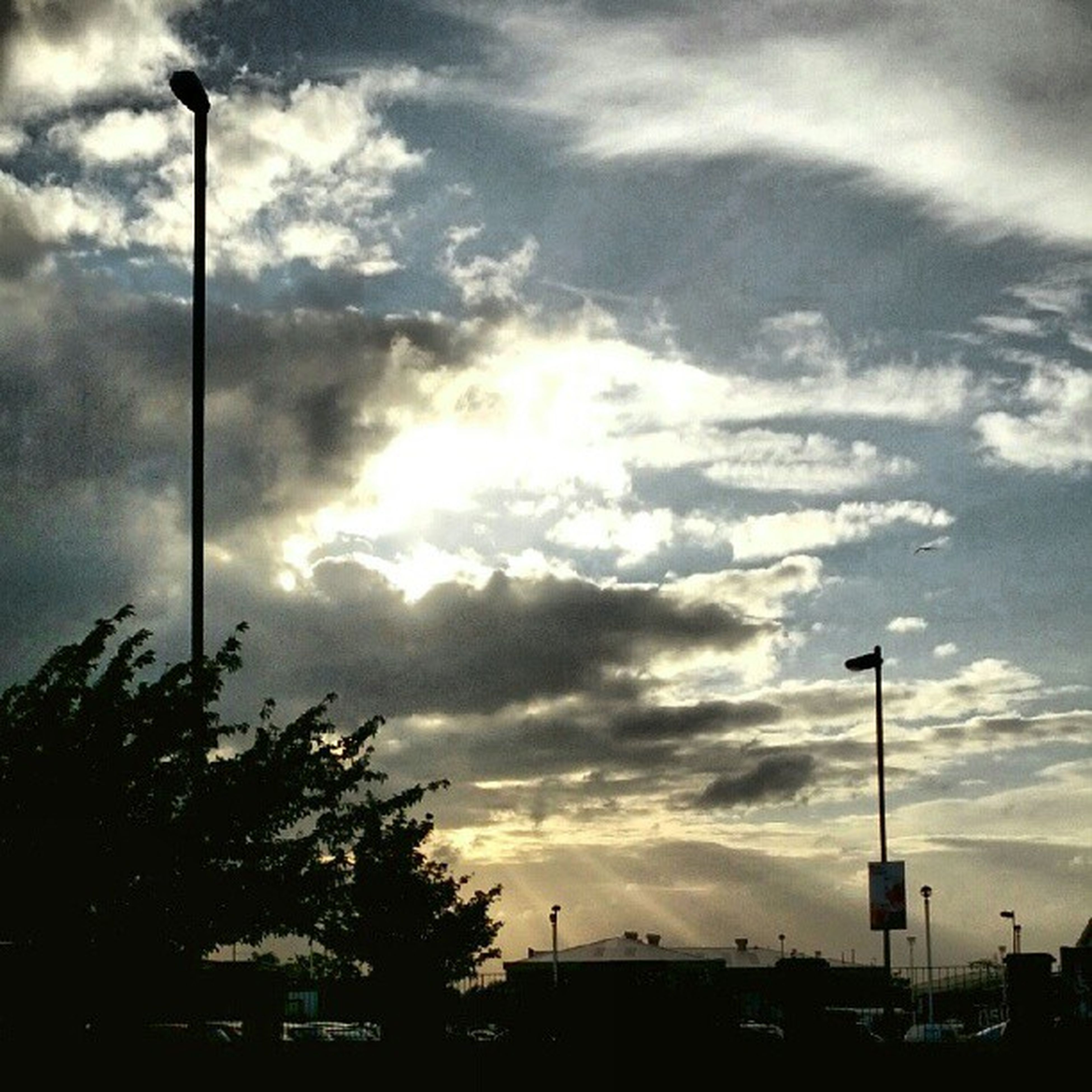 street light, sky, cloud - sky, tree, silhouette, cloudy, low angle view, lighting equipment, cloud, sunset, nature, pole, tranquility, scenics, beauty in nature, tranquil scene, outdoors, weather, overcast, no people