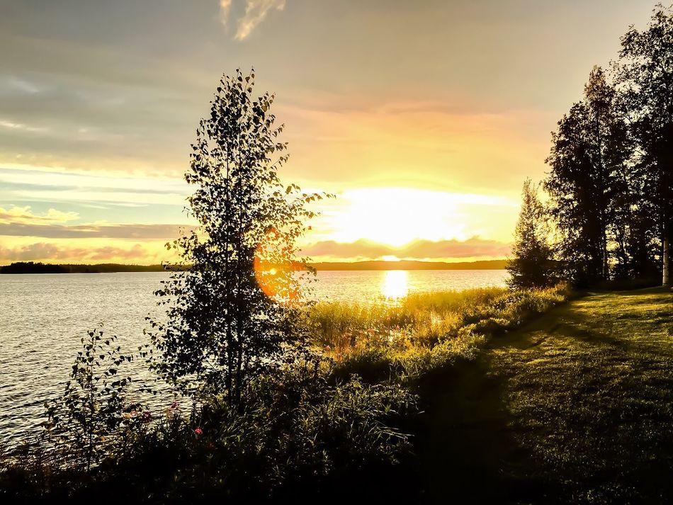 Sonnenuntergang in Finnland Sunset Sunset_collection Sunset Silhouettes Enjoying Life Water Reflections Relaxing Sundown Finland
