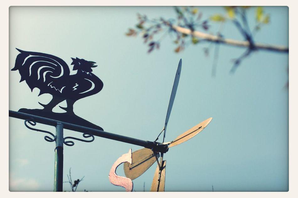 Windmill. Architecture Hello World Eye4photography  Street Photography
